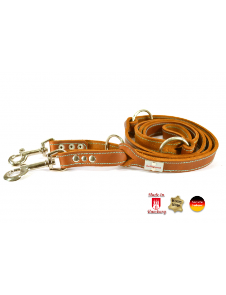 Beautiful dog leash in leather