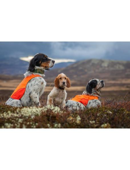 Markeringsdækken til hunde