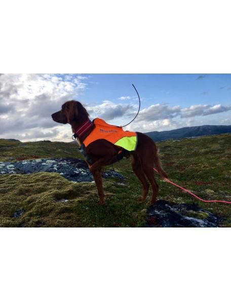 Protector GPS-vest til hunden antenne