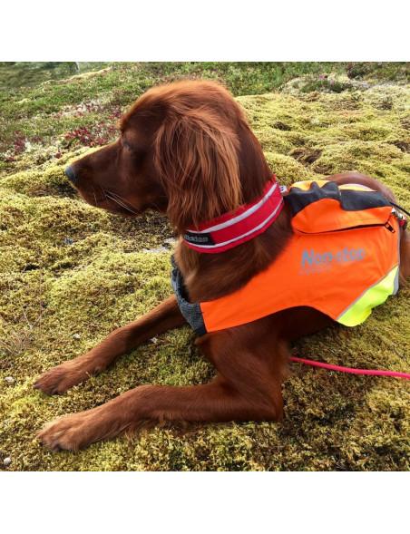 Protector GPS-vest til hunden natur