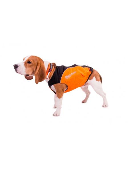 Jagtdækken til beagle