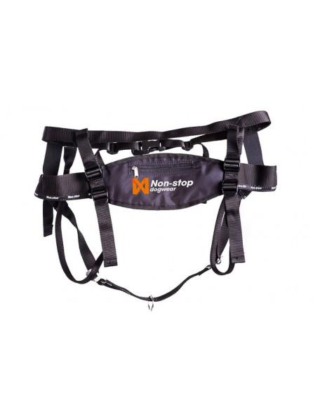 Running belt for the dog
