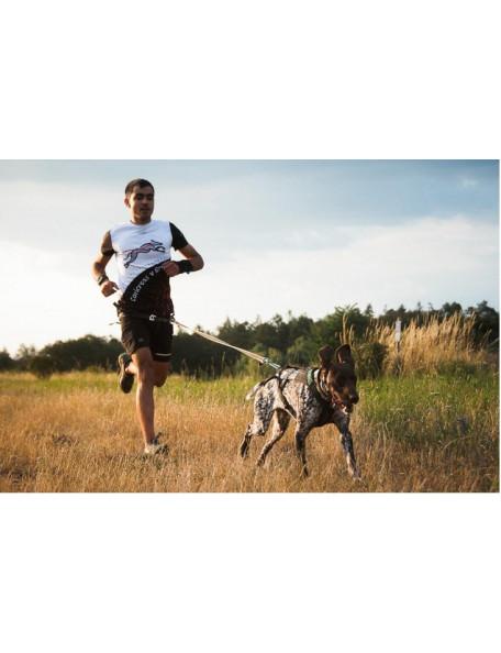 Freemotion harness løbesele til hunden til canicross